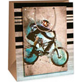 Ditipo Darčeková papierová taška 26,4 x 13,7 x 32,4 cm hnedá cyklista AB