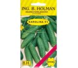 Holman F1 Karolína okurky nakladačky 2,5 g