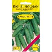Holman F1 Karolína uhorky nakladačky 2,5 g