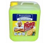 Mr. Proper Profesionál Lemon Univerzálny čistič 5 l