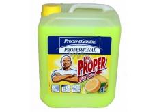 Mr. Proper Profesionál Lemon univerzálny citrónový čistič 5 l