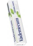 Vademecum Natural White zubná pasta s vôňou mäty 75 ml