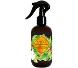 Ryor Hair Care urýchľovač rastu vlasov 3 mesačná kúra sprej 250 ml
