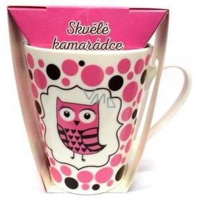 Albi Dobroty Darčeková sada hrnček a sypaný čaj bez ibišteka, aromatizovaný Skvelé kamarátke ružový 300 ml
