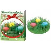 Sada k dekorování vajíček Travička zelená