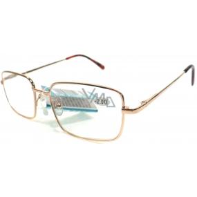 Berkeley Čítacie dioptrické okuliare +2,5 zlatej kov MC2 1 kus ER5050