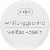 Ziaja Kozmetická vazelína pre všetky druhy pleti 30 ml