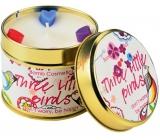 Bomb Cosmetics Tri vtáčiky - Three Little Birds Vonná prírodné, ručne vyrobená sviečka v plechovej dóze horí až 35 hodín