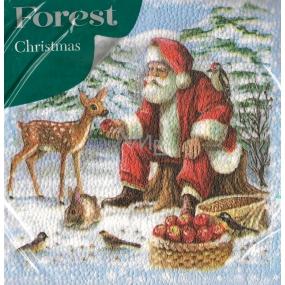 Forest Papierové obrúsky 1 vrstvové 33 x 33 cm 20 kusov Vianočné Santa a srneček