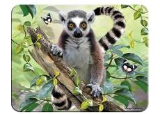 3D magnet - Lemur 9 x 7 cm