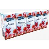 Big Soft Natura papierové vreckovky 3 vrstvové 10 x 10 kusov