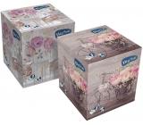 Big Soft Kosmetické ubrousky papírové 3 vrstvé box 60 kusů