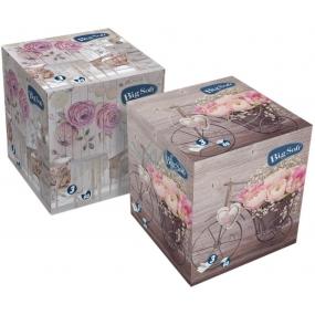 Big Soft Kozmetické obrúsky papierové 3 vrstvové box 60 kusov