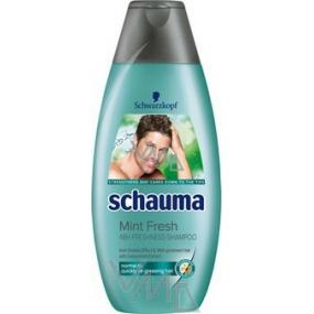 Schauma Sviežosť mäty šampón na vlasy pre mužov 250 ml