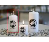 Lima Horoskop Ryby sviečka valec 50 x 100 mm 1 kus