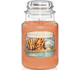Yankee Candle Grilled Peaches & Vanilla - Grilované broskve a vanilka vonná svíčka Classic velká sklo 623 g