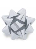 Nekupto Hviezdica strednej metal strieborná 6,5 cm HX 127 02