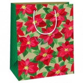 Ditipo Darčeková papierová taška 18 x 10 x 22,7 cm Vianočná hviezda