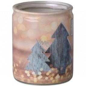 Bolsius Stromčeky vonná sviečka v skle 68 x 80 mm, doba horenia 23 hodín