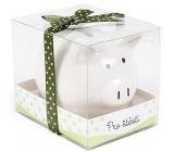 Albi Pokladnička prasiatko malé Pre šťastie biela 7 cm × 6,5 cm × 7,3 cm