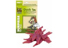 Huhubamboo Excellent Sušená kačacie prsia prírodné mäsová pochúťka pre psov 75 g