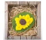 Bohemia Gifts & Cosmetics Natur Slunečnice ručně vyráběné toaletní mýdlo v krabičce 60 g