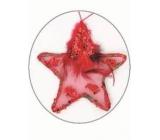 Hviezdička s pierkom a flitrami červená na zavesenie 11 cm