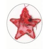 Hvězdička s peříčkem a flitry Červená 11 cm
