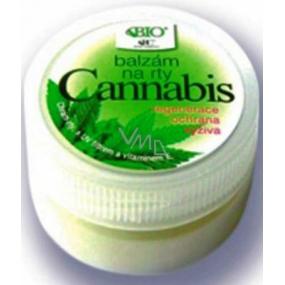 Bione Cosmetics Bio Cannabis balzám na rty 25 ml