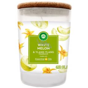 Air Wick Essential Oils White Melon & Ylang Ylang - Biele melóny a ylang ylang vonná sviečka sklo 185 g