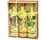 Kitl Syrob Bio Bazový kvet sirup 500 ml + Zázvor sirup 500 ml + Mätový sirup pre domáce limonády 500 ml, darčekové balenie