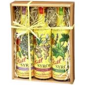 Kitl Syrob Bio Bazový kvet sirup 500 ml + Zázvorový sirup 500 ml + Mätový sirup pre domáce limonády 500 ml, darčekové balenie