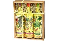Kitl Syrob Bio Bazový kvet + Zázvorový sirup + Mätový sirup pre domáce limonády 3 x 500 ml darčekové balenie