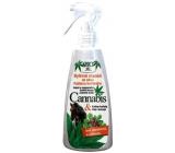 Bion Cosmetics Cannabis bylinné mazanie so silou Kaštanu konského 260 ml