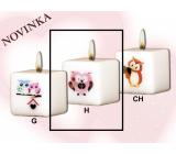 Lima Sovy ružová sviečka s obtiskom biela kocka 45 x 45 mm 1 kus