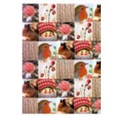 Ditipo Vánoční balicí papír typ 8 100 x 70 cm 2 kusy 2039913