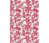 Ditipo Darčekový baliaci papier 70 x 500 cm Biely červené vetvičky