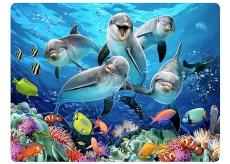 3D pohlednice- Delfíny 16 x 12 cm