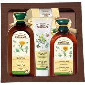 Green Pharmacy Nechtík a Rozmarínový olej šampón pre mastné vlasy 350 ml + kondicionér na mastné vlasy 300 ml + Olivový olej a goji krém na ruky 100 ml + Aloe a limetka balzam na pery 3,6 g, kozmetická sada