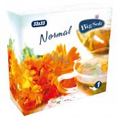 Big Soft Normal papierové obrúsky 1 vrstvové 33 x 33 cm 100 kusov