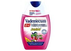 Vademecum Junior Jahoda 2v1 zubná pasta a ústna voda v jednom 75 ml