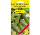 Holman Aurea F1 uhorky nakladačky jemnoostná 2,5 g