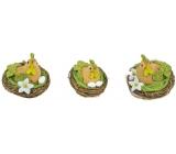 Slepička v hnízdě hnědo-zelená 6,5 cm 1 kus