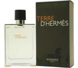 Hermes Terre D´Hermes toaletní voda pro muže 100 ml