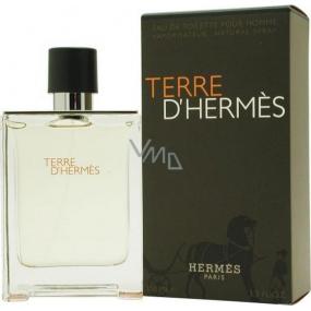 Hermes Terre D Hermes toaletná voda pre mužov 100 ml