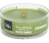 WoodWick Evergreen - Vůně jehličí vonná svíčka s dřevěným knotem petite 31 g
