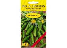 Holman F1 Regina Uhorky nakladačky 2,5 g