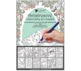 Kreatívne omaľovánky zvieracie kráľovstvo 12 motívov, 24 listov 23 x 16 cm