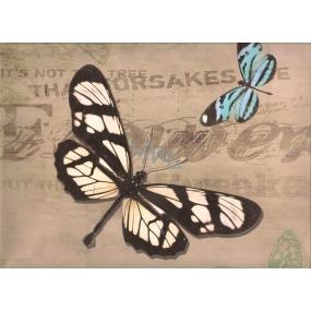 Nekupto Darčeková Kraftová taška 32,5 x 26 x 13 cm Motýlci 326 CL