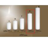 Lima Gastro hladká sviečka biela valec 60 x 220 mm 1 kus